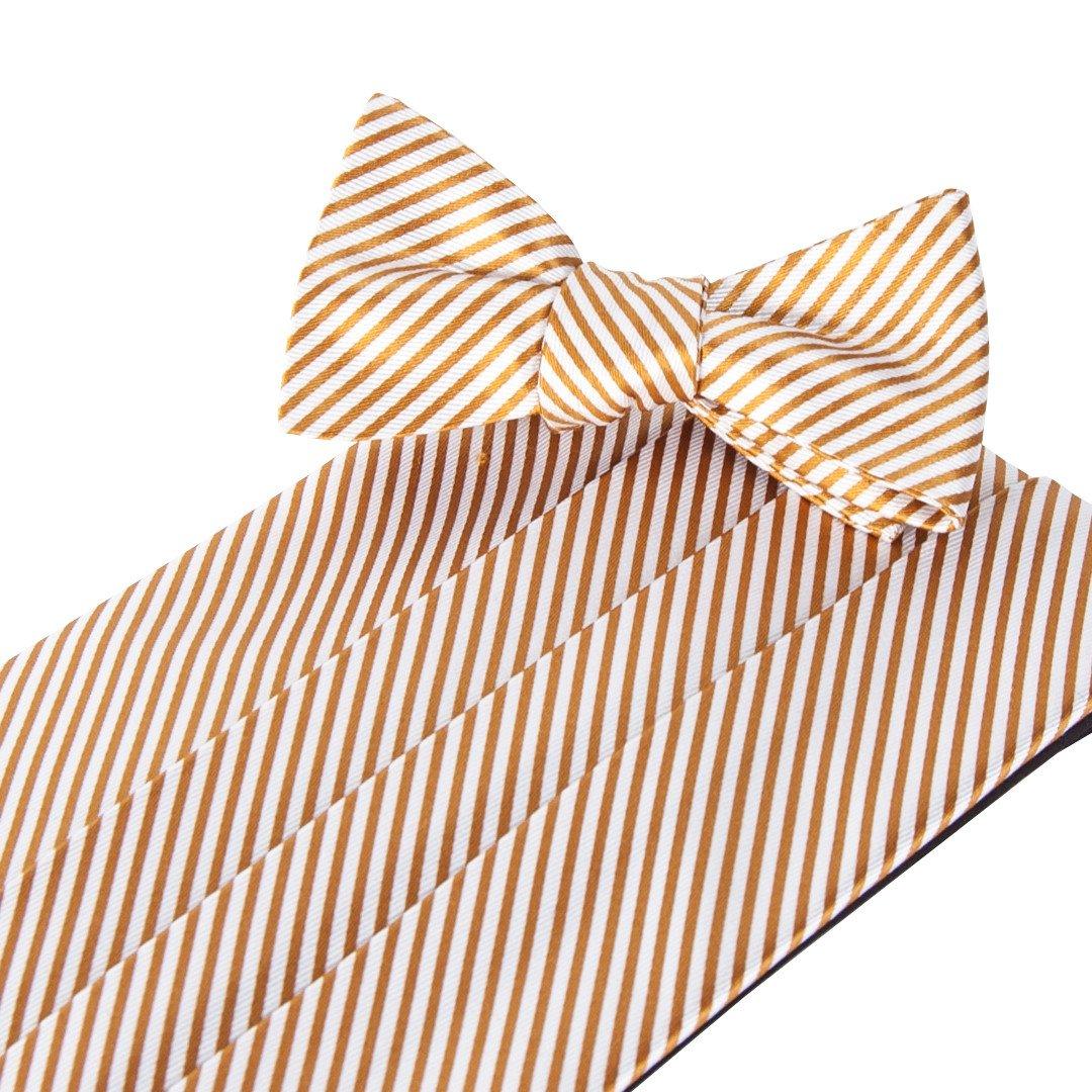Collared Greens Signature Series Gold Cummerbund and Bow Tie Set