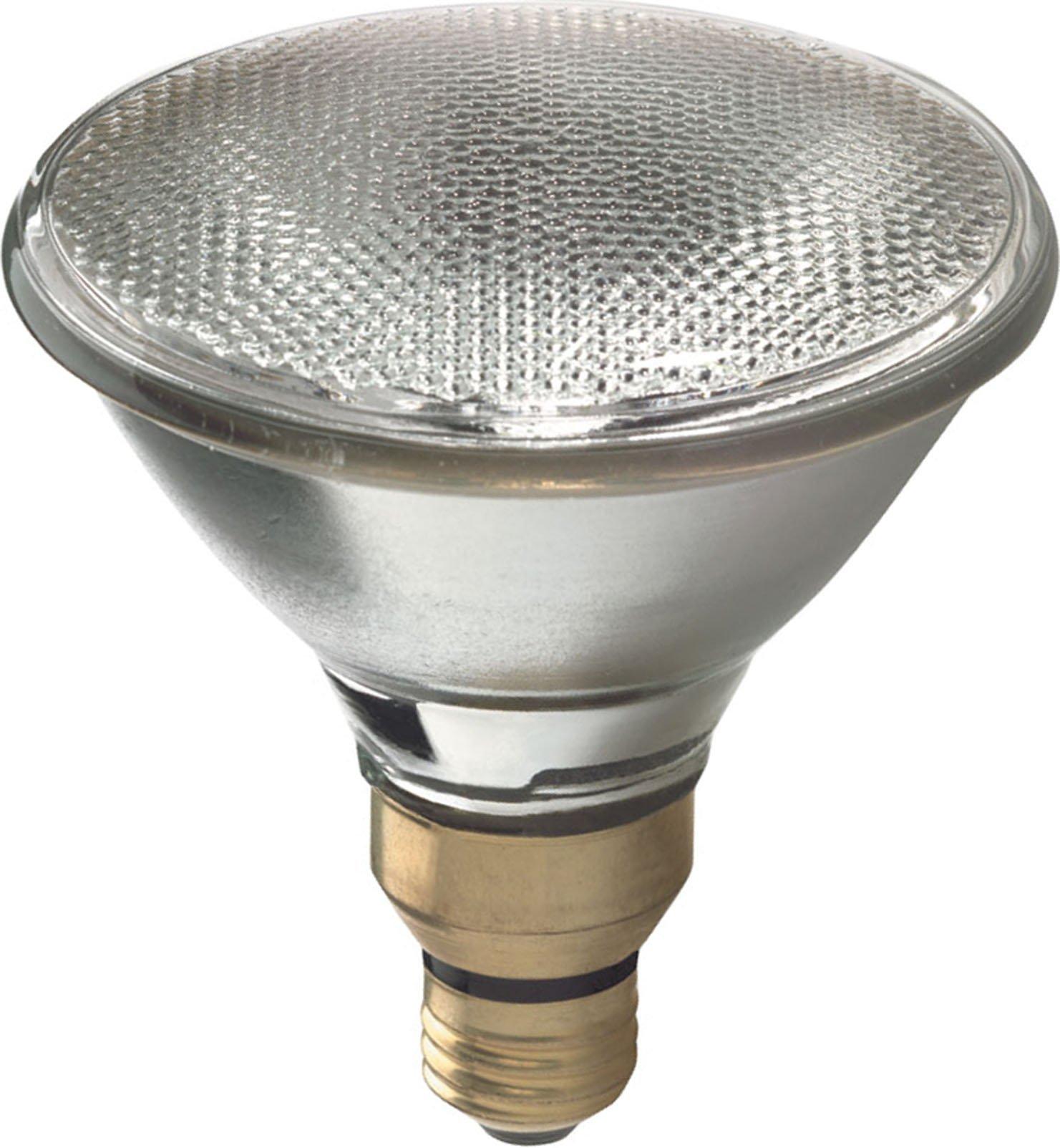 GE Lighting 66282 Energy-Efficient Halogen 80-Watt (120-watt replacement) 1600-Lumen PAR38 Floodlight Bulb with Medium Base, 2-Pack