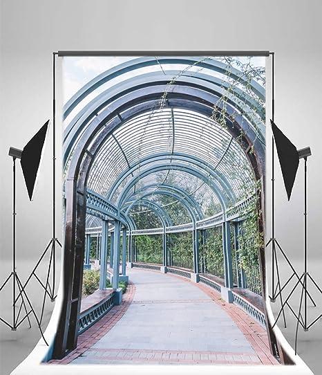 Aaloolaa 1,8 x 2,7 m Arboretum Arche couloir Photographie ...