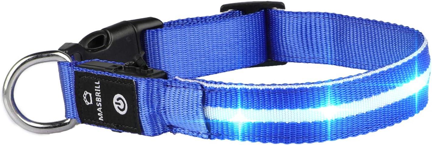 MASBRILL Collar LED Perro, Collar para Perro Luminoso Recargable y Impermeable, 3 Modos de Iluminación led y Tamaño Ajustable para Perros Pequeños Medianos Grandes(Azul M)