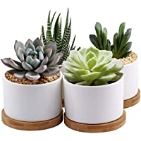 Succulent Planter ZOUTOG White Mini 3.15 inch Ceramic Flower Planter Pot with Bamboo Tray Pack of 4 (Plants NOT Included…