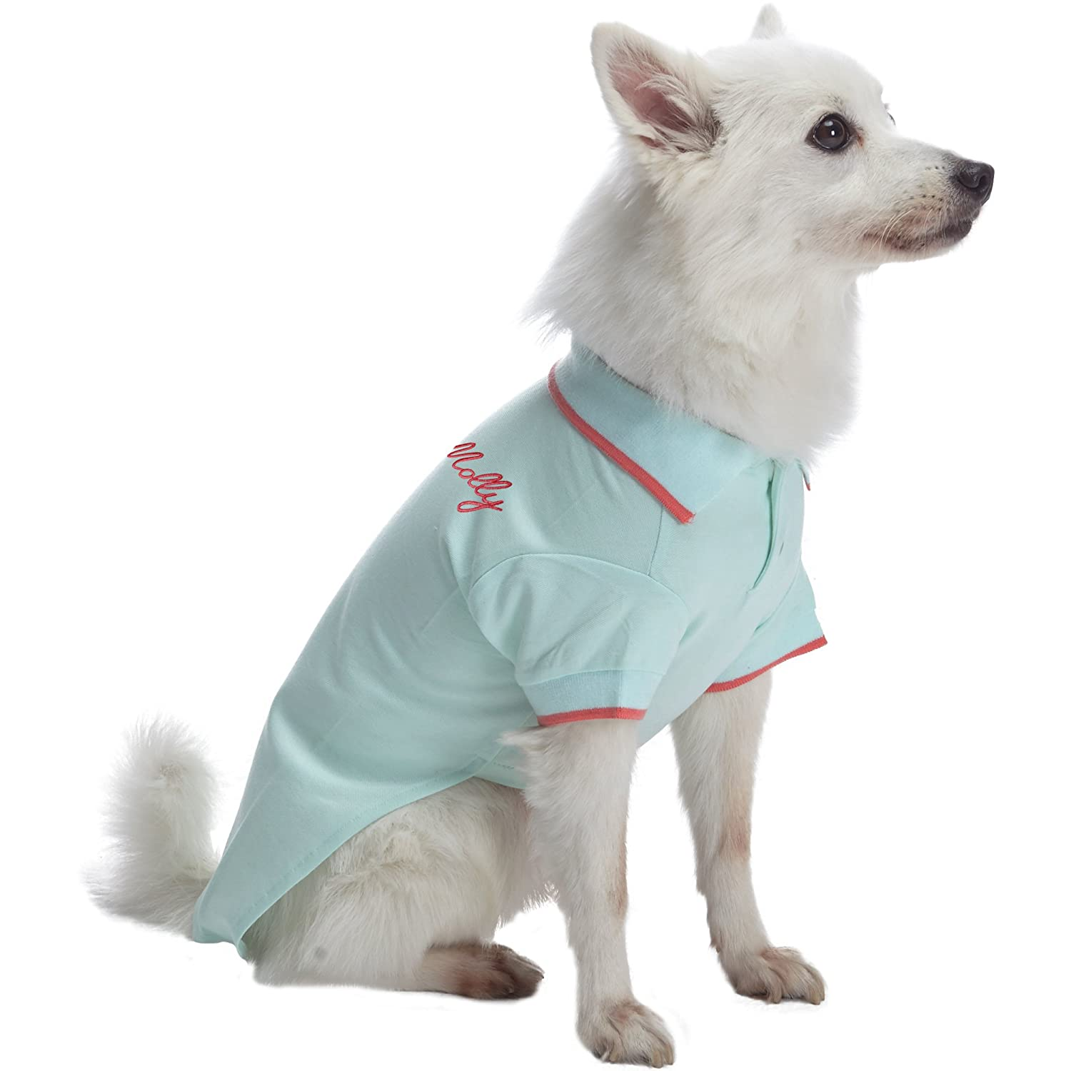 Blueberry Pet Back to Basic Cotton Blend Dog Polo Shirt in Navy and Rusty Red Back Length 16//41cm Pack of 2 Clothes for Dogs