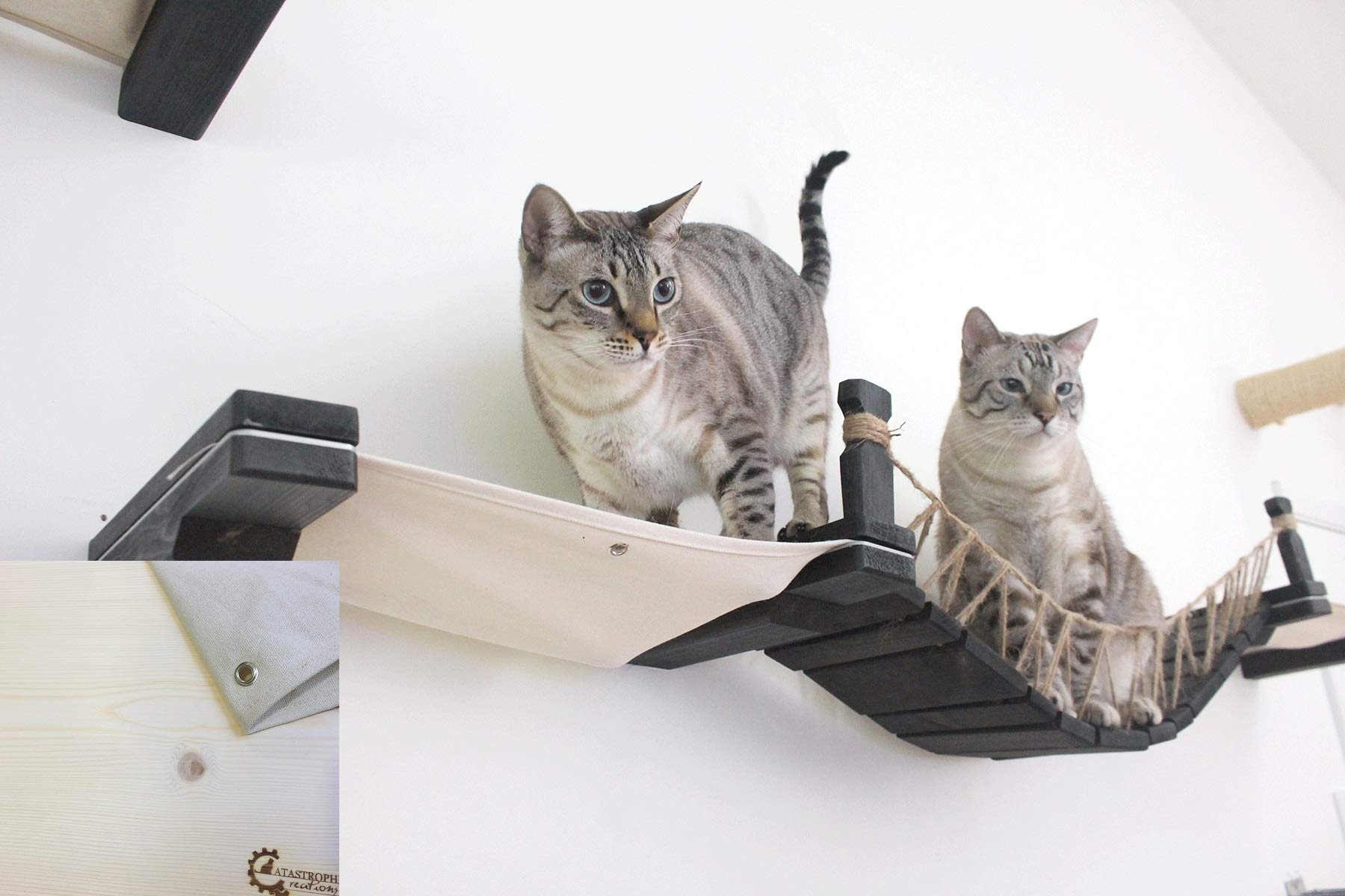 CatastrophiCreations The Cat Mod - Wall-Mounted Cat Bridge with Fabric Lounger for Cats by CatastrophiCreations
