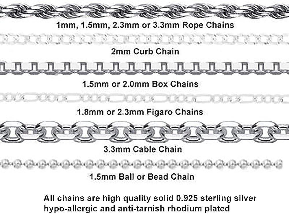 US Jewels And Gems 0.925 Sterling Silver Zodiac Capricorn Goat January /& February Charm Pendant