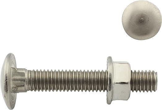 SC-Normteile SC603 50 St/ück Flachrundschrauben M5 x 55 mm mit Vierkantansatz DIN 603 Vollgewinde // Schlo/ßschrauben aus rostfreiem Edelstahl A2 V2A