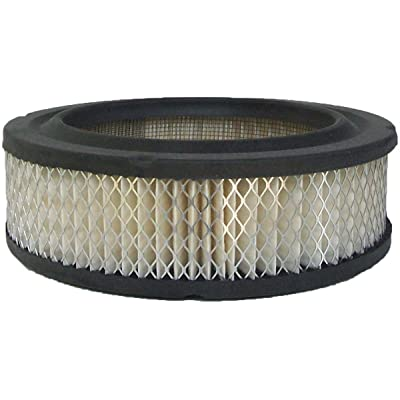Luber-finer AF121 Heavy Duty Air Filter: Automotive