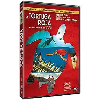 Amazon Com The Red Turtle Latin America Import English Language Region 1 Ntsc Movies Tv