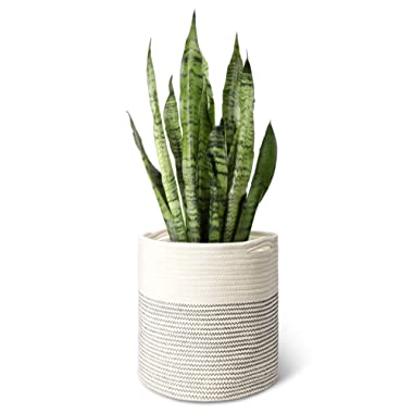 Mkono Cotton Rope Plant Basket Modern Indoor Planter Up to 11 Inch Pot Woven Storage Organizer with Handles Home Decor, 12  x 12