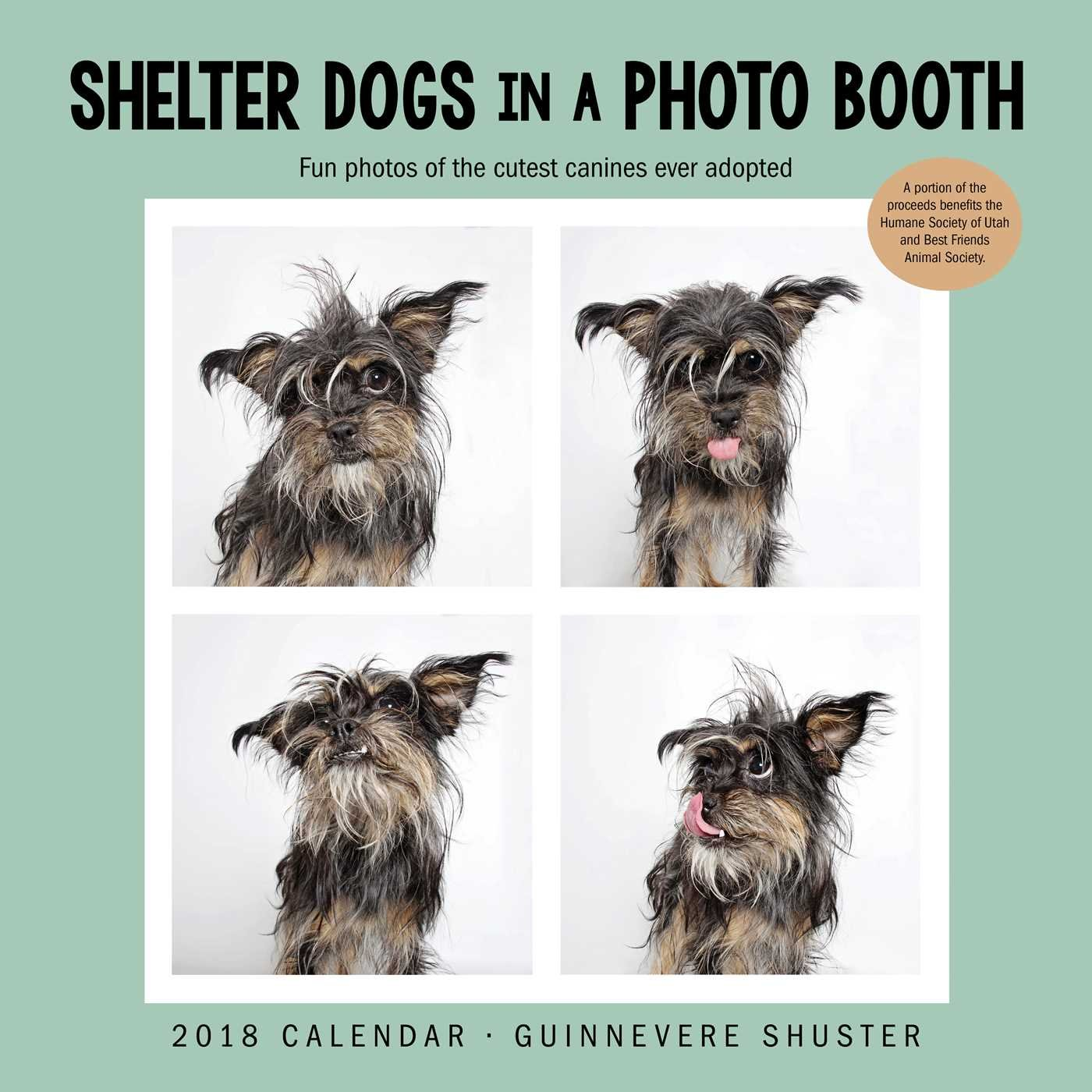 Download Shelter Dogs in a Photo Booth 2018 Wall Calendar ebook