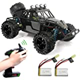 Exercise N Play RC Truck RC Car, Remote Control Car, Terrain RC Cars, Electric Remote Control Off Road Monster Truck, 1:18 Sc