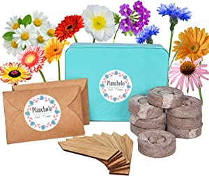 Plancholo 8 Flower Window Garden Starter Kit-Indoor Organic Flower Growing Kit-Easily Grow 8 Flowers Plants from Seeds with Comprehensive Guide-Heirloom & Non GMO - DIY Home Seed Starter-Unique Gifts