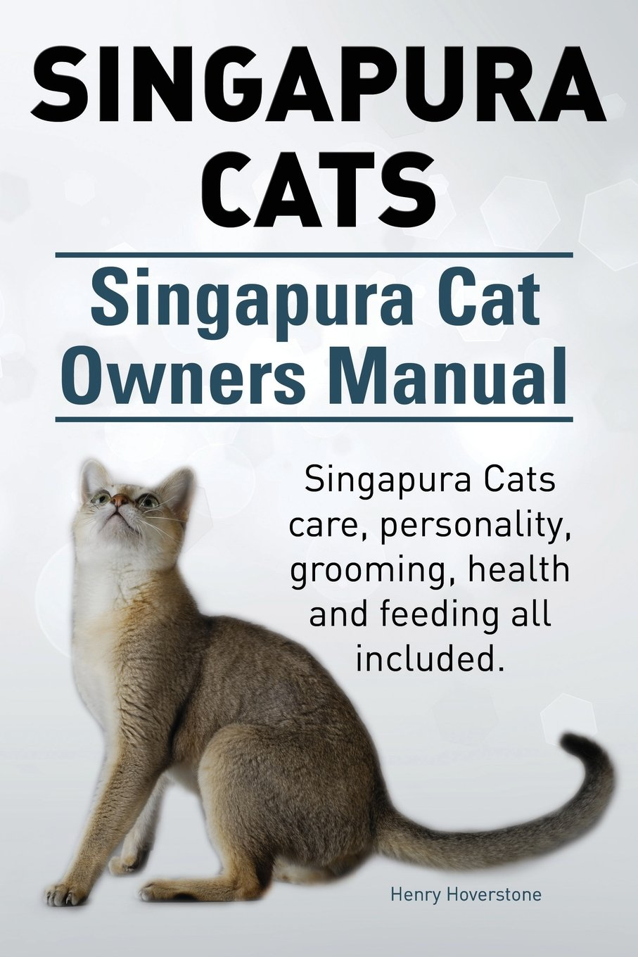 Singapura Cat Owners Manual. Singapura Cats care, personality, grooming,  health and feeding all included.: Henry Hoverstone: 9781910617311:  Amazon.com: ...