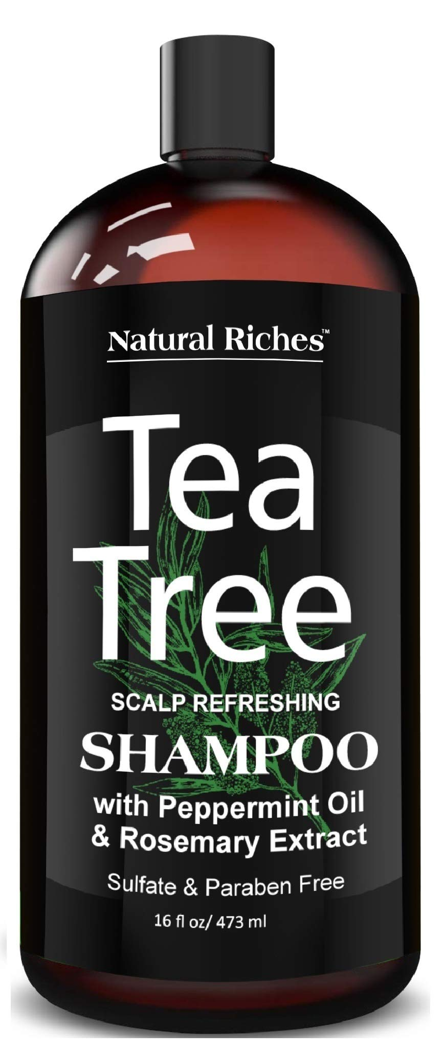 Natural Riches Tea Tree Shampoo 16 fl oz - Special Tea Tree Oil Shampoo Fights Dandruff with Pure Tea Tree Oil for Dry Hair, Itchy Scalp, lice, with Pure Lavender, Peppermint, Sulfate & Paraben Free by Natural Riches