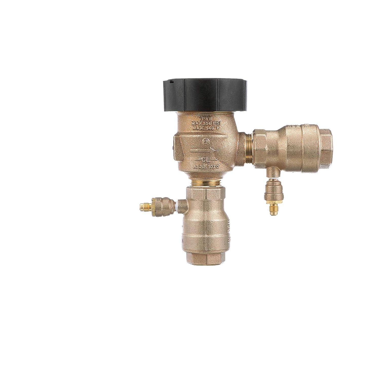 "Watts Water Technologies 792012.0 Anti Siphon Vacuum Breaker, 1"" Fip, Lead Free"