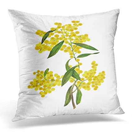 Amazoncom Sdamas Decorative Pillow Cover Blue Australian Golden