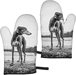 Greyhound Oven Mitts Heat Resistant Gloves Waterproof Non-Slip Thick Mitt Kitchen Decor Accesories for Baking Cooking Grilling BBQ Microwave Toaster