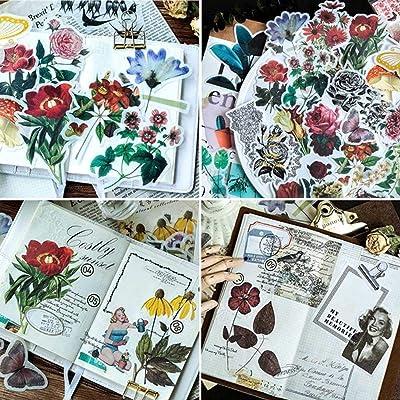 300 pcs Pegatinas Autoadhesivas para Manualidades,Pegatinas de Plantas Naturales para DIY Manualidades Decoración Scrapbooking Álbumes de Recortes Calendarios Tarjetas de Felicitación Regalos: Hogar