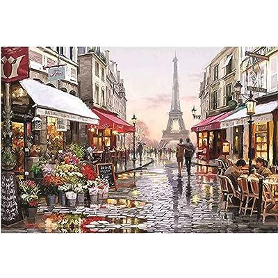 Puzzles for Adults 1000 Piece Large Puzzle, Paris Flower Street Landscape Jigsaw Puzzle, Large Puzzle Game Toys Gift: Toys & Games
