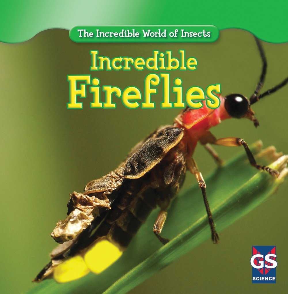 Read Online Incredible Fireflies (The Incredible World of Insects) pdf epub