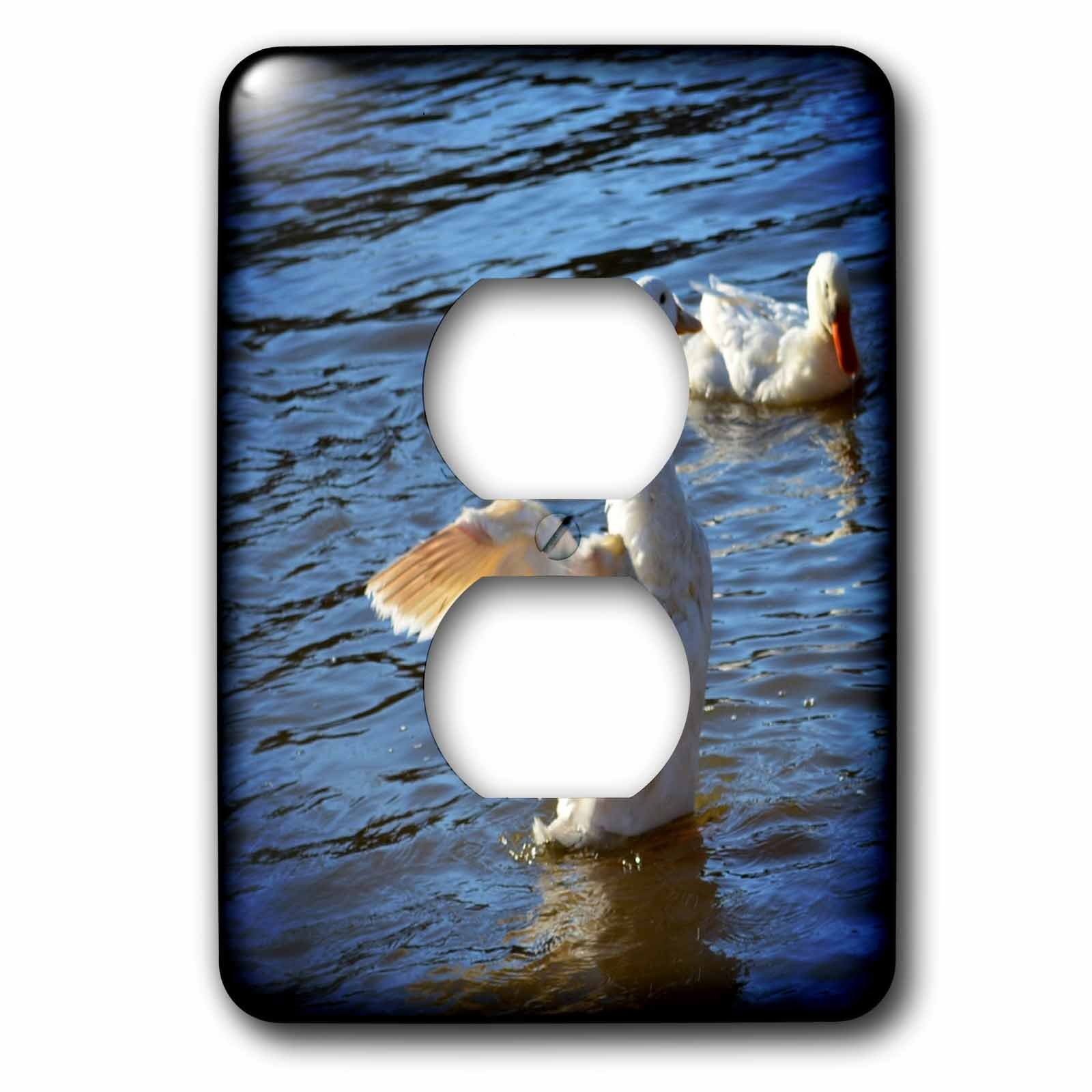 3dRose WhiteOaks Photography and Artwork - Ducks - Spread Your Wings is a photo of a duck with its wings open - Light Switch Covers - 2 plug outlet cover (lsp_265332_6)