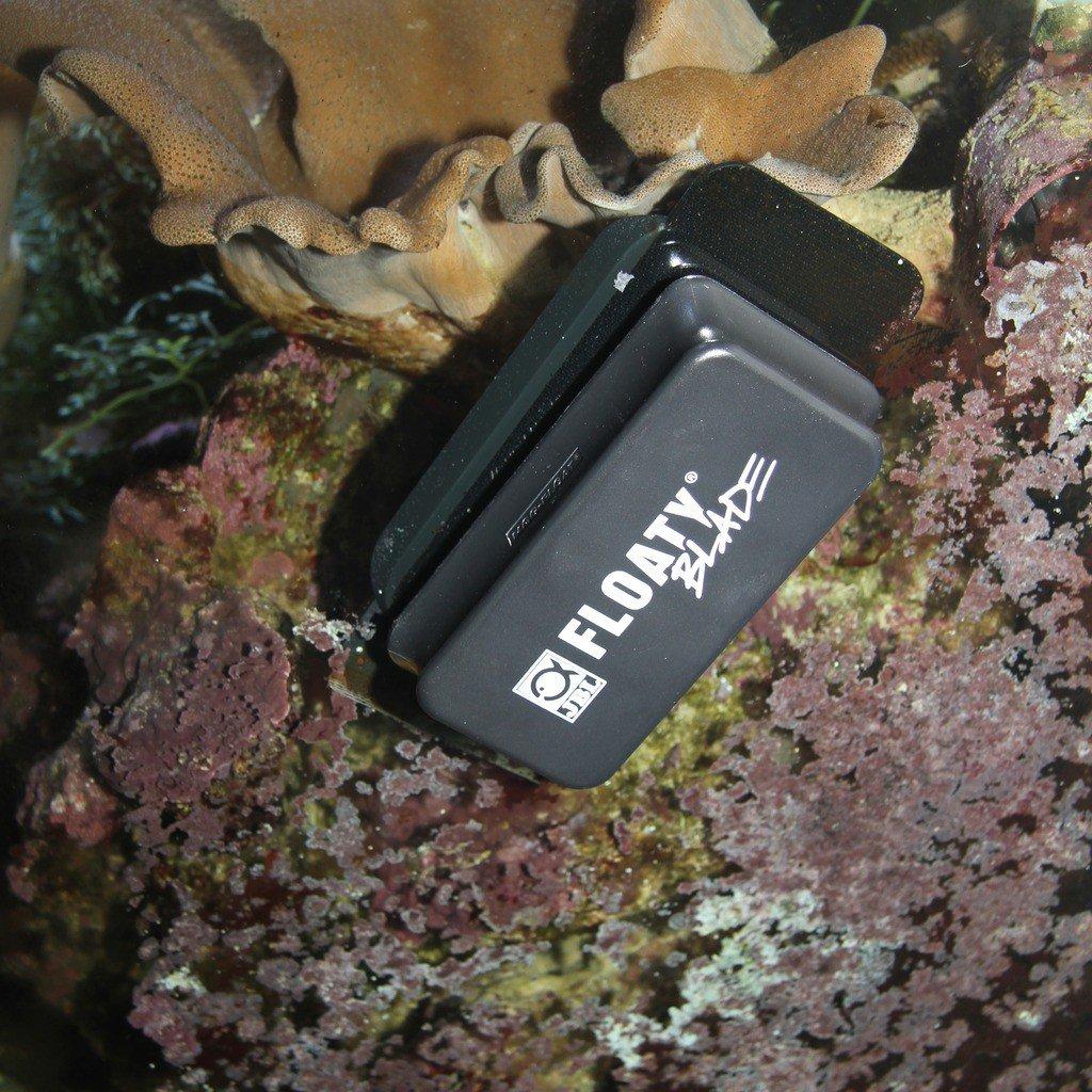 JBL Discos de Lavado magnético para acuarios, Flotante: Amazon.es: Productos para mascotas