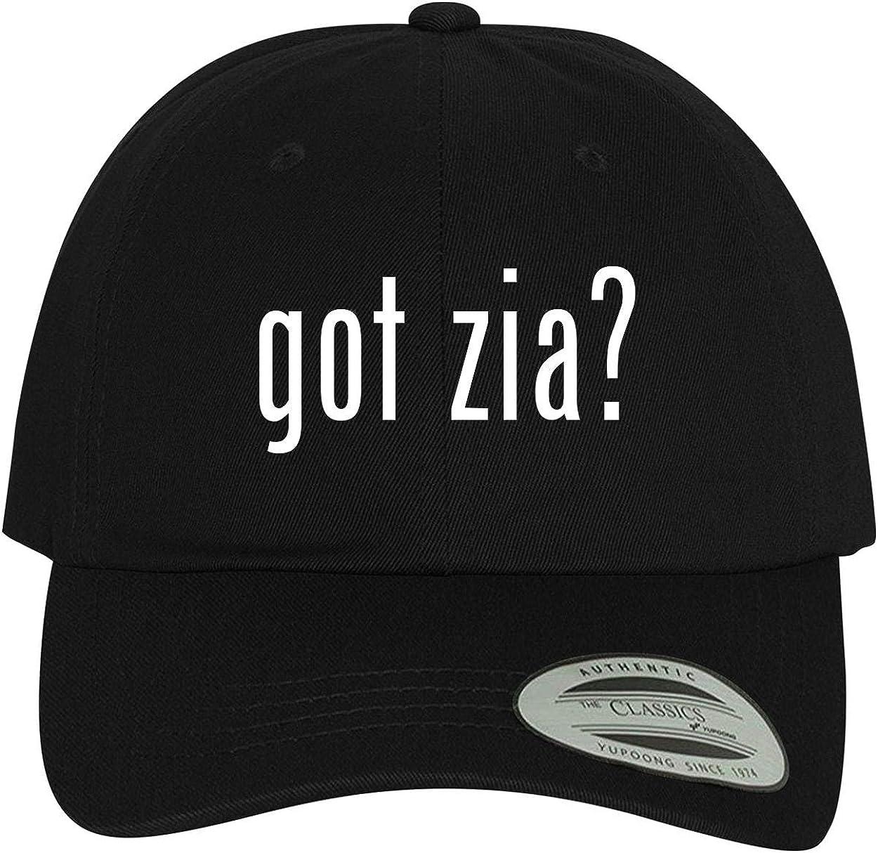 Comfortable Dad Hat Baseball Cap BH Cool Designs got zia?