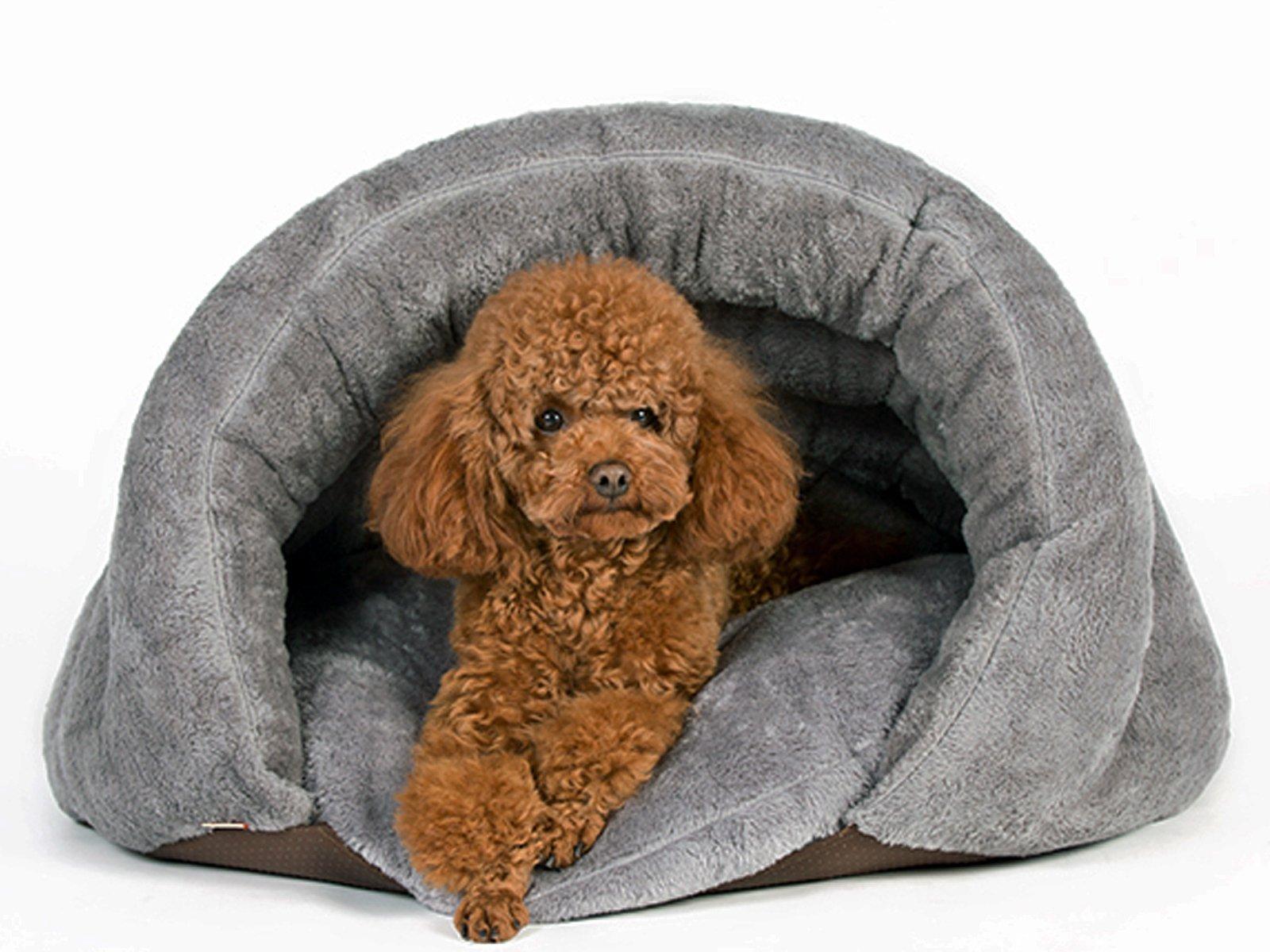 Pls Birdsong The Original Cuddle Pouch Pet Bed Medium
