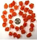 Orange Spawn Sacs; 36 Sacs; Harvested/Processed in Michigan; Certified; #SS12VOR