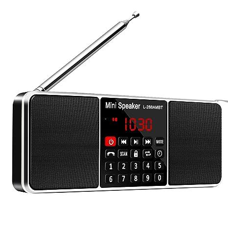 Review Bluetooth Radio Speaker,ELEGIANT Portable