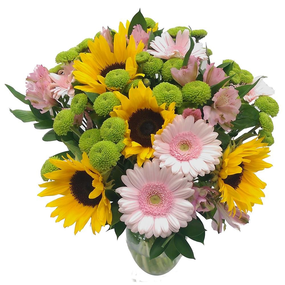 Clare Florist Scent with Love Fresh Flower Bouquet, Radiant Sunflowers and Chrysanthemums for Birthdays, Anniversaries and Special Occasions Y-1271-A