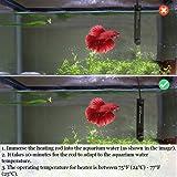 Betta Heater - Fully Submersible Aquarium Heater