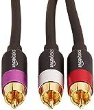 AmazonBasics 1-Male to 2-Male RCA Audio Stereo