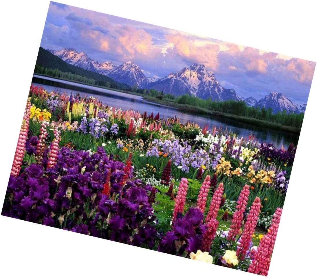A DIY Oil Painting for Adults Kids Sea of Flowers Hawaii Landscape Paint by Number Kit with Brushes and Arylic Pigment