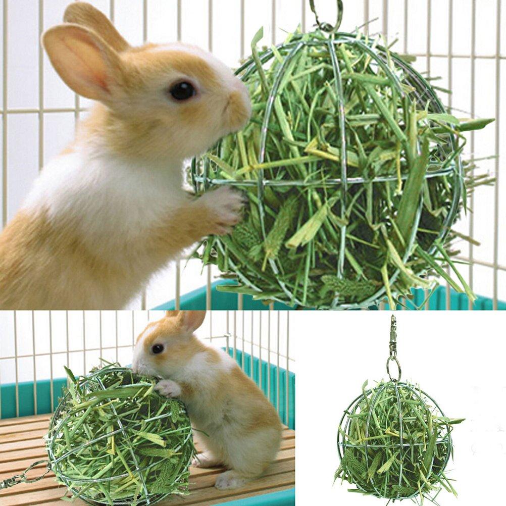 SNNplapla Hay Manger Food Ball For Guinea Pig Hamster Rat Rabbit Fun