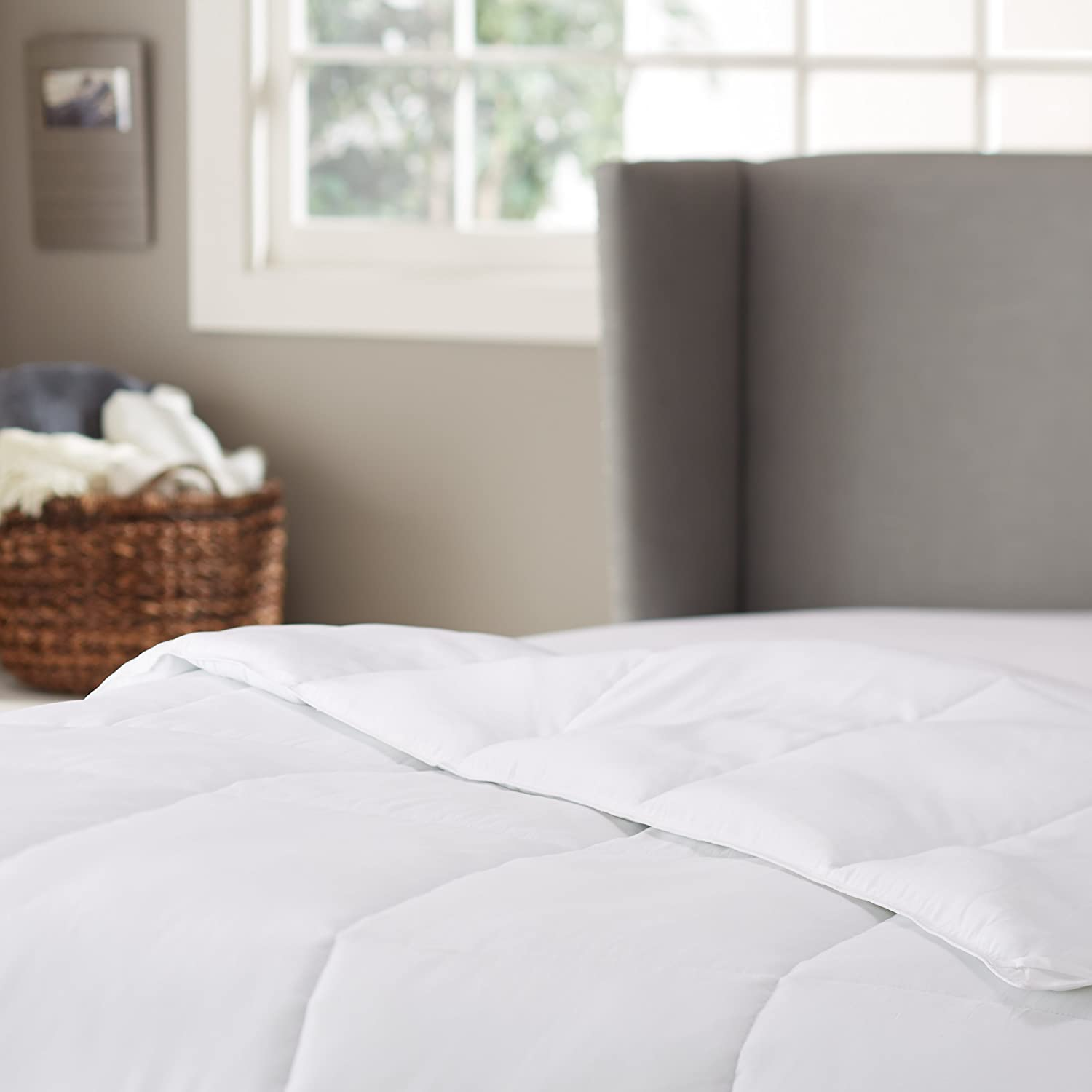 Pinzon Hypoallergenic Down Alternative Year Round Comforter - Twin