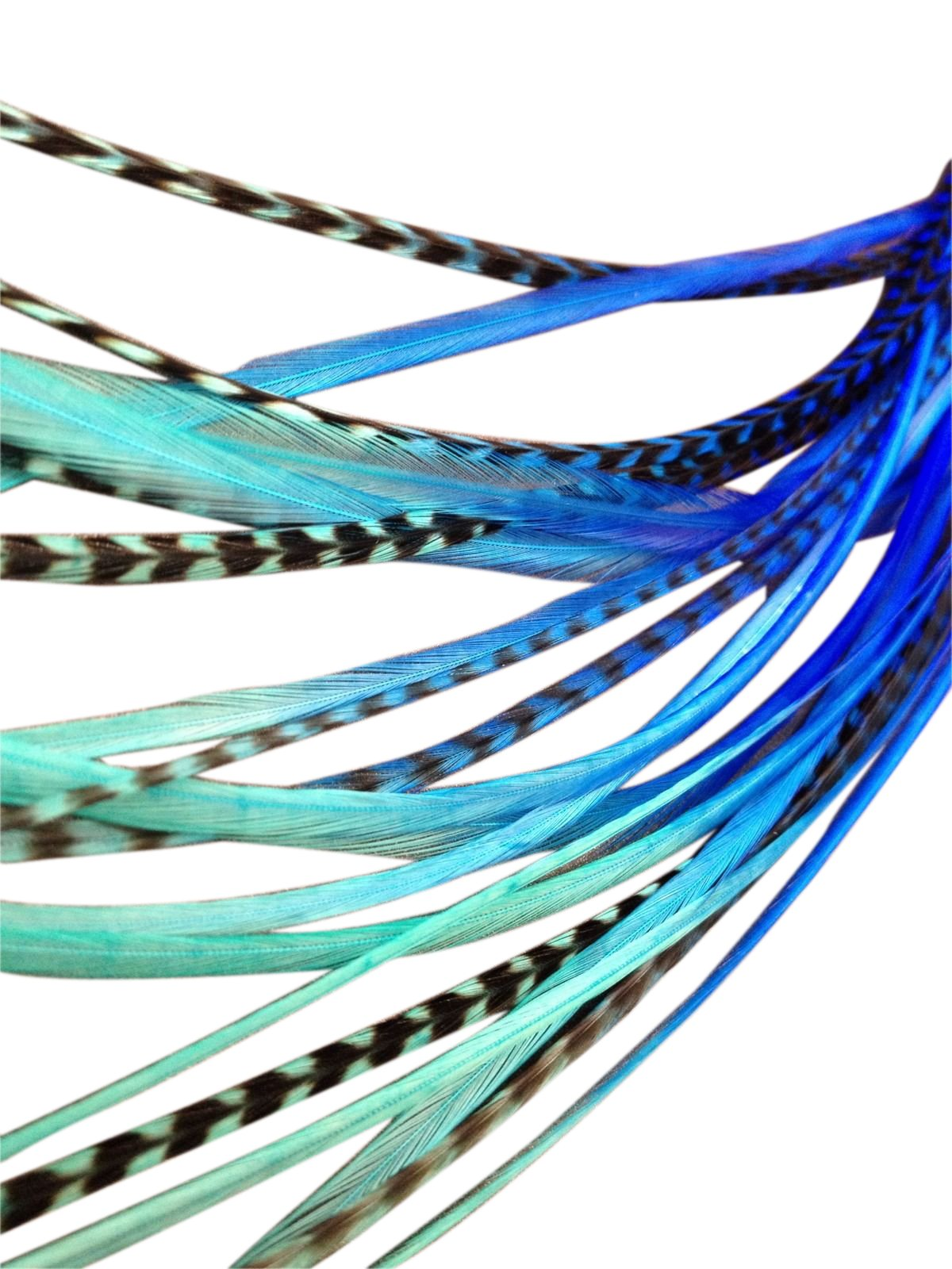 Feather Hair Extensions, 100% Real Rooster Feathers, 20 Long Thin Loose Individual Feathers, By Feather Lily