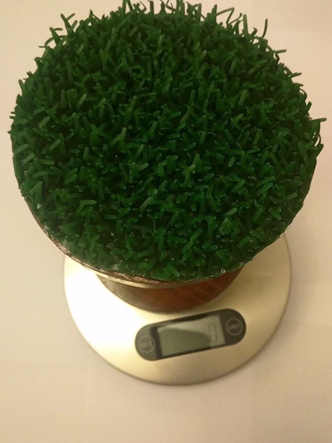 Falconry Digital Scale Made with Original Astroruf Unbranded Does Not Apply