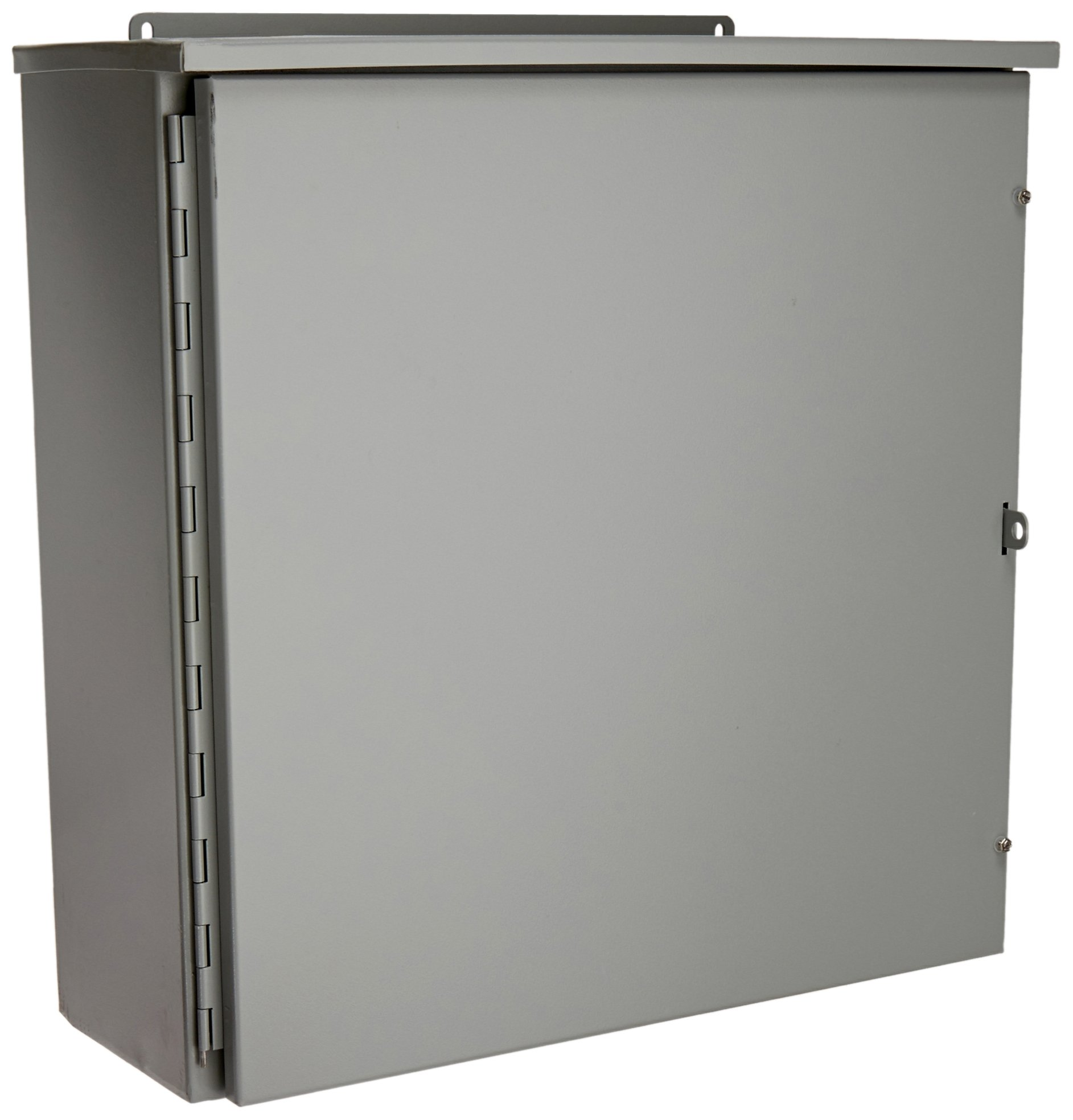 Wiegmann RHC242408 RHC-Series NEMA 3R Rainproof Hinge Cover Wall-Mount Enclosure, Carbon Steel, Medium, 24'' x 24'' x 8''