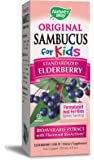 Nature's Way Sambucus for Kids, Elderberry Flavored, 4-Ounce