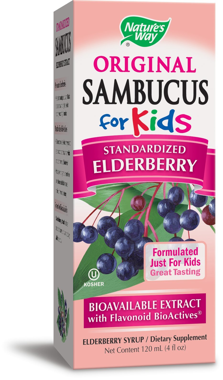 Nature S Way Sambucus For Kids Elderberry