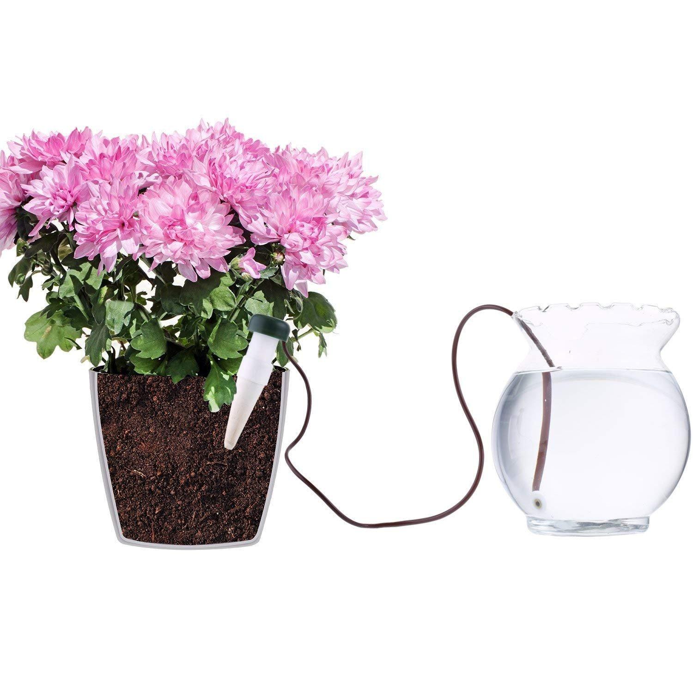 C/ône darrosage Wady Arrosage automatique pour plantes Lot de 6 Distributeur deau pour plantes dint/érieur