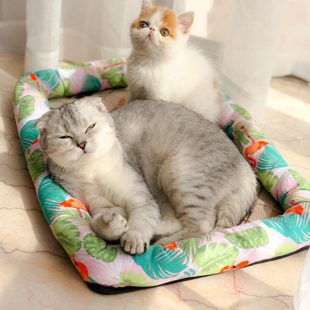 AOLVO Cama para Perro, Cama para Mascota, Cama para Gato con sensación de refrigeración, cojín de Seda de Hielo, Cama para Dormir para Perros pequeños, ...