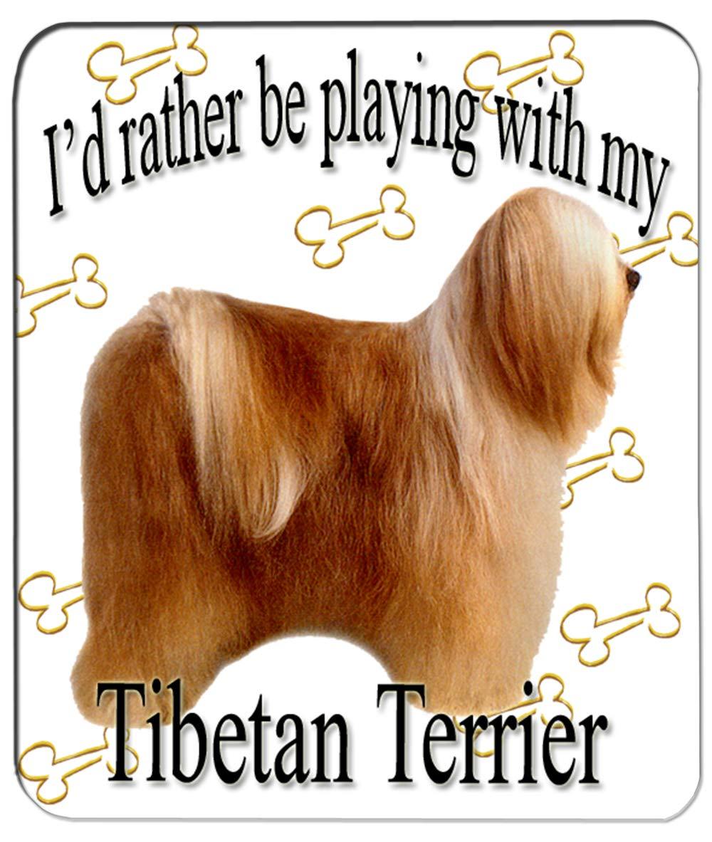 Brown Tibetan Terrier