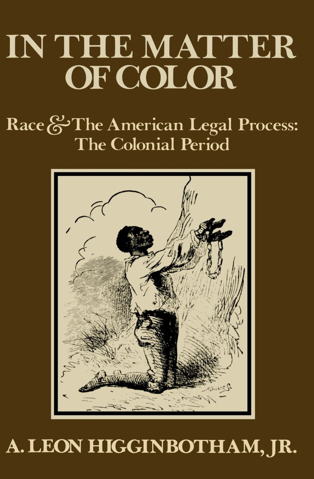 In The Matter Of Color: Race And The American Legal Process: The Colonial  Period: A Leon Higginbotham: 9780195027457: Amazon: Books
