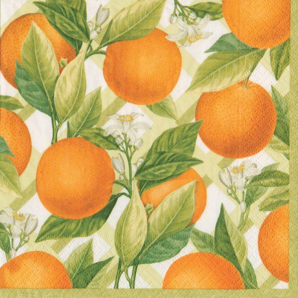 Orange Pack of 8 Caspari Orangerie Paper Square Dinner Plates