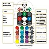 SPARKE RF Remote Control 28 Keys for Multicolor RGB