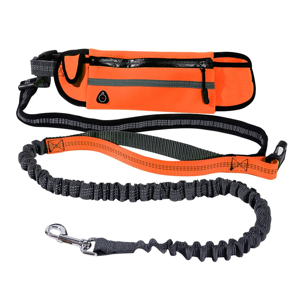 Lennystone Hands Free Dog Leash by Adjustable Leash and Belt for Running and Walking with Retractable Reflective Bungee cord and Pockets (Orange)