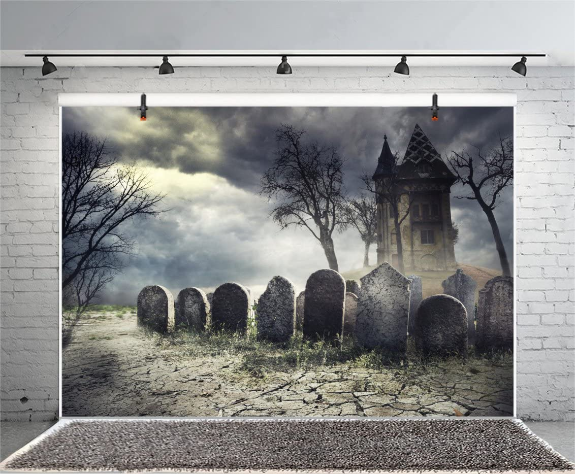 10x8ft Creepy Cemetery Backdrop Gothic Style Moonlight Scary Haunted House Background for Photos Ghost Tomb Gravestone Halloween Party Backdrops for Photography Photo Studio Props