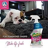 OdoBan Pet Solutions 32oz Spray Bottle Oxy Stain