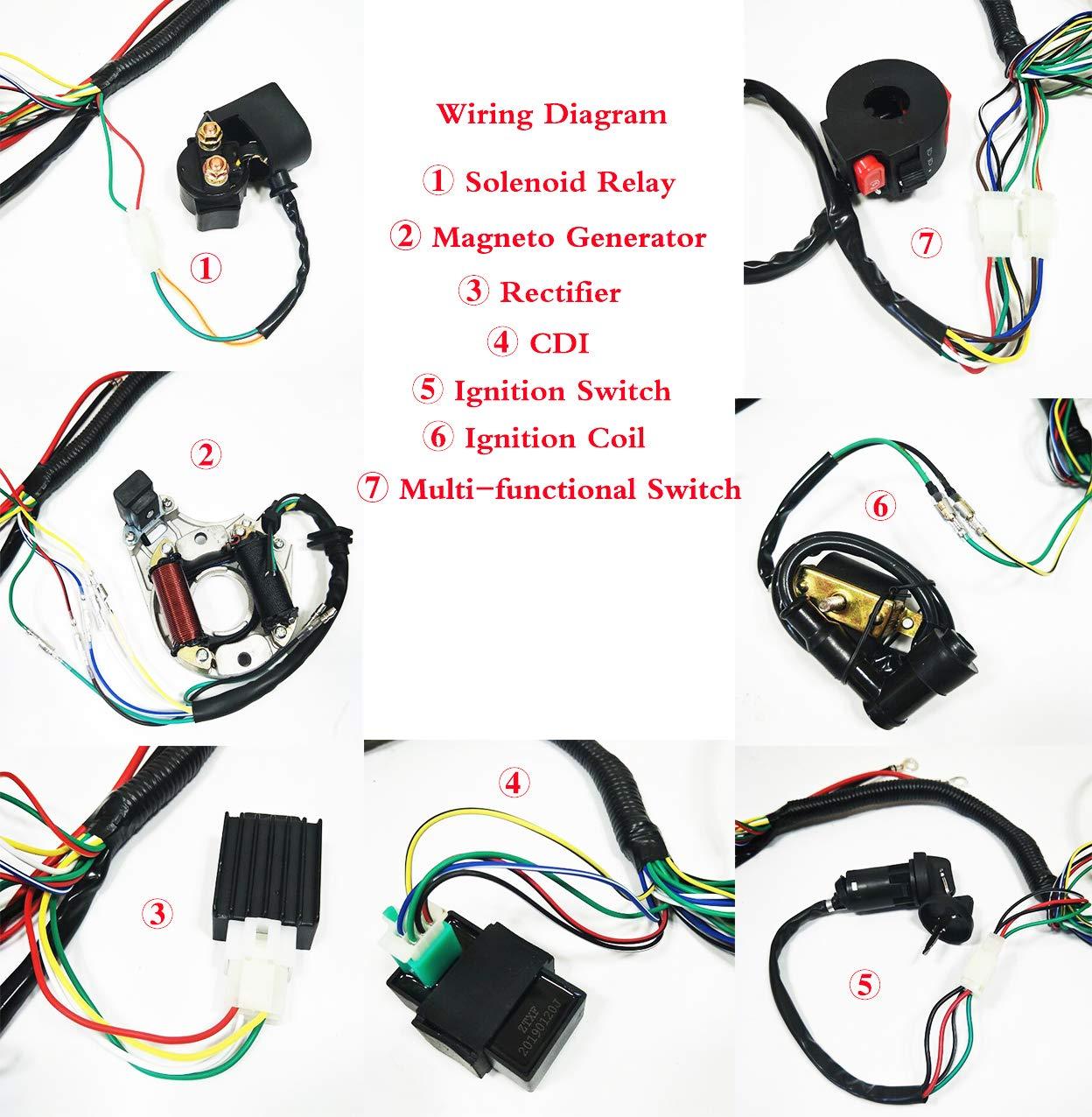 Mini Chopper Pocket Bike Wiring Harness Pocket Bike Wiring Diagram